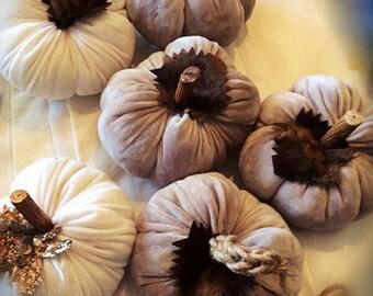 Pumpkin-Fabric sculpture-velvet pumpkin-white pumpkin- gray-handmade-decorative item-halloween gift- Boho decor-ooak pumpkin-stuffed pumkin