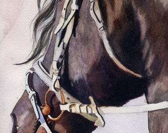 Friesian Morgan Horse Art Watercolor Painting PRINT  Equine artist Rachel Parker rachelsstudio Big Large Huge