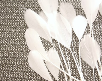 10 WHITE coque tail stripped feathers. White eyelash feathers 12 pcs. 11-18 cm. Stripped white coque feathers