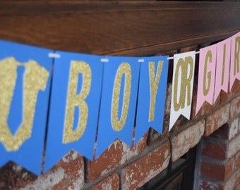 Boy or Girl Banner, Gender Reveal Banner, Gender Reveal Party Decor, Pink and Blue Banner, Gender Reveal Party