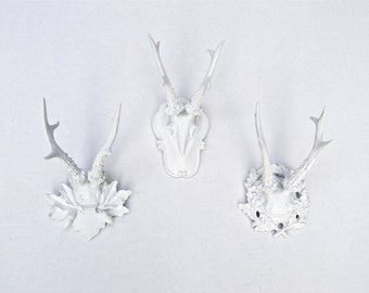 Roe Deer Antlers - Collection of 3 Faux Taxidermy Small Fancy Antler Wall Mounts SCF01