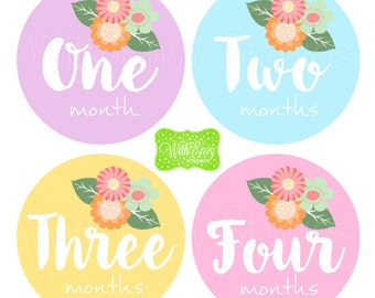 Flower Baby Monthly Stickers - Baby Bodysuit Stickers - Pastel Monthly Baby Stickers -Girl Monthly Stickers - 025