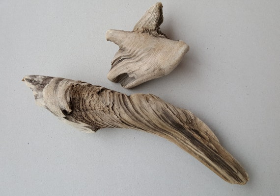 2 old driftwood pieces natural driftwood home decor driftwood for 2 old driftwood pieces natural driftwood home decor driftwood for sale large driftwood from seasidedescent on etsy studio teraionfo