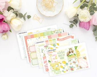 Aloha Summertime Weekly Kit - Planner Stickers - Erin Condren Vertical Life Planner