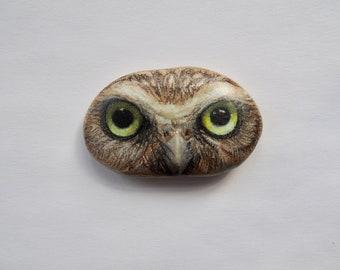 Burrowing Owl Rock