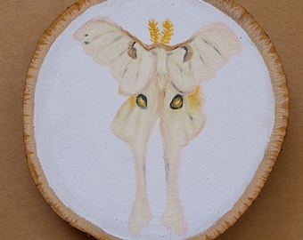 Luna II Albino Moth Original Fantasy Oil Painting 3 x 3 in Birch Wood Slice