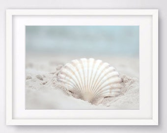 Seashell Photography, Seashell Wall Art Prints Nautical Decor Beach Decor Coastal Printable Art Digital Prints Instant Download Bathroom Art