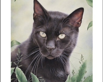 "black cat 8""x 10"" art print Mystifying animal feline signed by artist Karen Romine free shipping giclee"