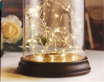 Glass Cloche Dome-Base-LED Lights-Brand New in Box