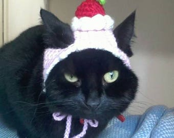 Cat dessert hat with cherry on top