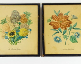 Vintage Framed Botanical Prints - Set of 2