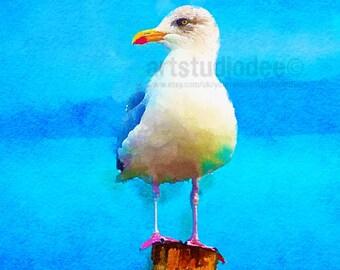 Seagull Print- 8x10 or A4. Seaside Print, Coastal Prints, Beach Birds,Coastal Wall Art, Nautical Art,Beach House Decor, Bird Lover Gift