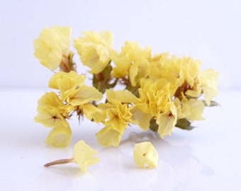 1 packet of real flowers, dried sea Lavender yellow color for fill globes, vials and glass beads
