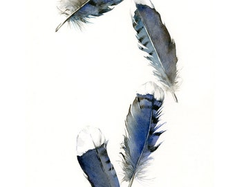 feather painting- print - watercolor feathers, feather art -Blue Jay Feathers -