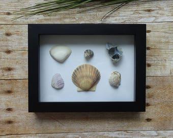 Seashell art / Sea shells / Sea glass art / Sea shells home decor / Art frame with seashells / Beach home decor / Beach lover gift idea
