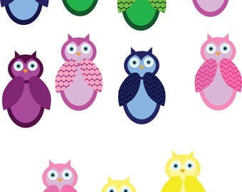 Different Colored Owls