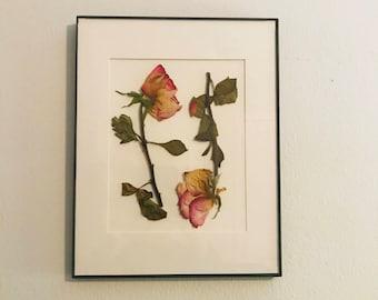 Pressed Rose art