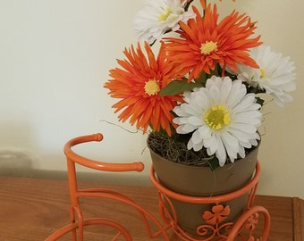 Tennessee Fan Bike, Tennessee Yard Decor , Vols Fan Arrangment,  Vols decor