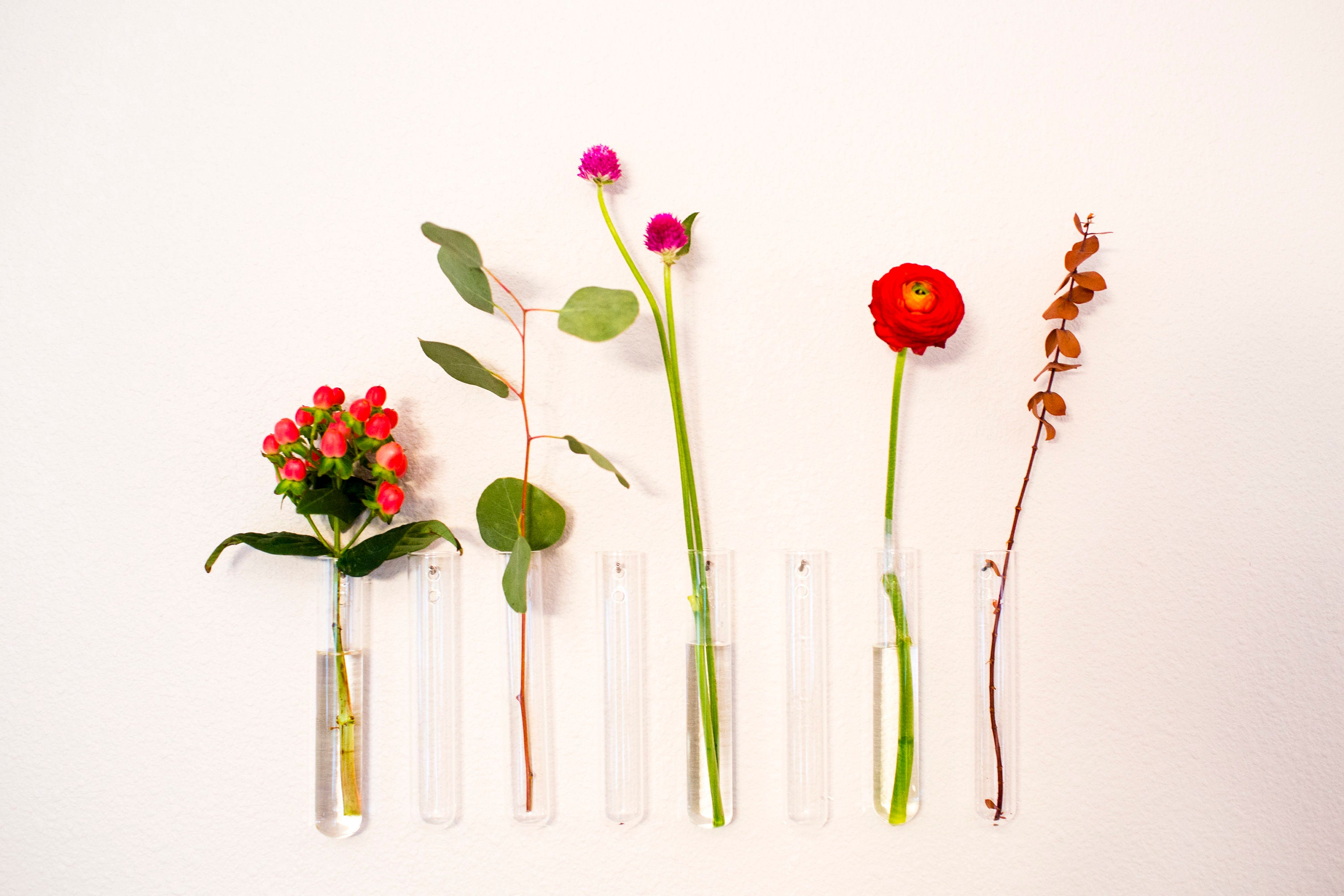 Glass bud vase office decor for women room decor wall bud vase zoom floridaeventfo Gallery