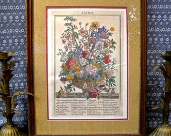 June Floral Botanical,  Vintage Botanical Print,   Shabby Cottage Chic,  Professionally Matted and Framed Vintage Print