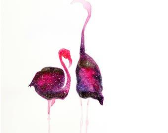 Galaxy Flamingo Duet