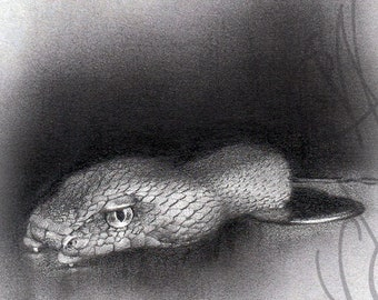 "Martinefa's original drawing - ""Serpent"" (Snake)"
