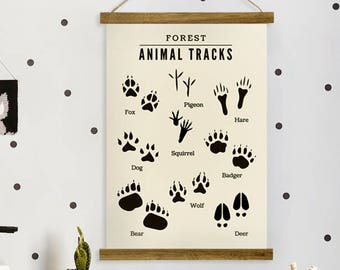 Educational posters for kids - European Forest Animals Tracks || For boys and girls, kids and babies, posters,