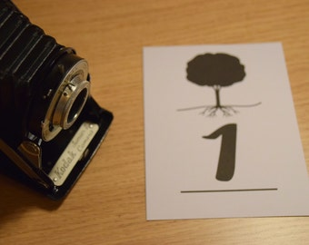 Tree Table Numbers. A6 Pack of 8.