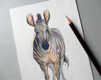 ORIGINAL Gouache Painting - Grevy's Zebra