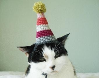 pet hat - party