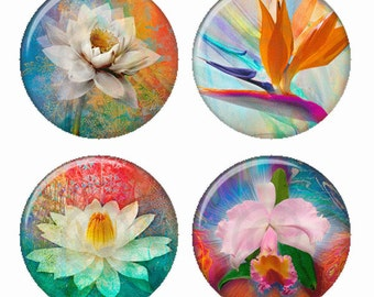 Colorful Exotic Flowers Magnets or Pinback Buttons or Flatback Medallions Set of 4
