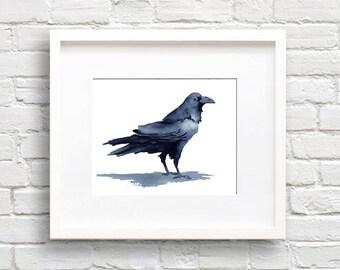 Raven Art Print - Bird - Animal Art - Wall Decor - Watercolor Painting