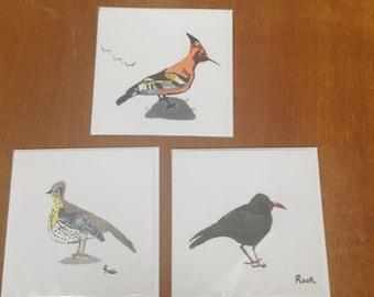 Printed bird cards