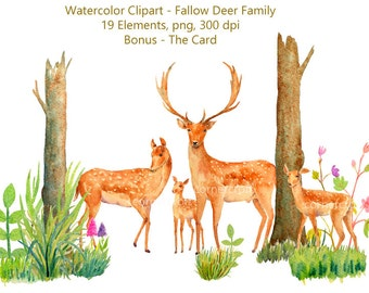 Deer Clip art, watercolour fallow deer family and woodland elements, watercolor deer, deer clipart, instant download