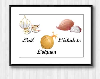 Vegetables,Vegetables in French,Vegetable poster,Vegetables Decor,Kitchen Decor,Kitchen Print,Kitchen Wall Decor,Kitchen Poster,Onion,Garlic