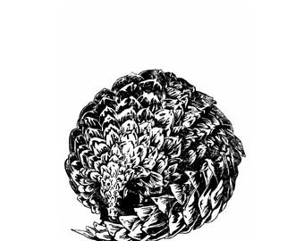 Large scale animal/Pangolin linocut
