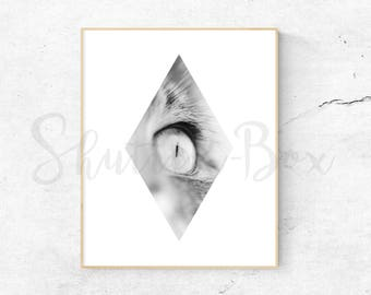 Macro Cat Nose Photo Digital Print - Geometric, Photography, Black and White, Cat, Graphic, Modern, Minimalist, Texture, Abstract