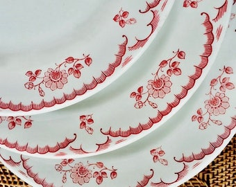 Chardon Rose Dinner Plate, Red Pink Floral, Classic Pretty Vintage Restaurant Ware, Rim Rol Wel Roc, Shenango China 1960s, As New