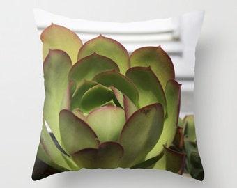 Red and Green Succulent Photo Pillow, Unfolding Landscape Desert Photograph, Home Decor Pillow Cover 18x18