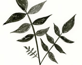 Inky Plant II