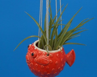 Small, Hanging Puffer Fish Planters, Air Plants, Succulents