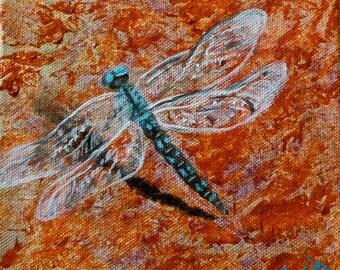 Dragonfly #6 - Variable Darner