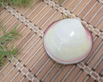 Natural Sea Shell Box Keepsake Trinket Jewelry Box Wedding Proposal Ring Holder Ocean Sea Beach Collectible Vintage FREE SHIPPING (797)