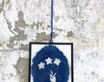 framed cyanotype