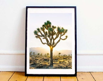 Joshua Tree 01, Digital Download, Tree Print, Wall Art, Photography Print, Desert Art, Sunset Photography, Poster, Modern Print