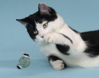 Kitty BonBon Chase Toys