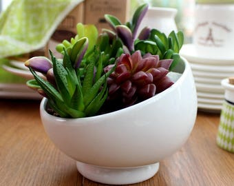 Small White Ceramic Flower Pot Indoor Succulent Planter Vase Bevel Opening  Ceramic Bowl For Indoor Gardening