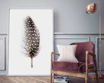 Feather Photography - (Print # 103)  - Guinea Feather  -Fine Art Print - Two Paper Choices- Mineral Geode Agate Crystal Decor