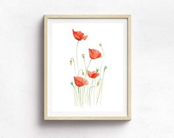 Poppy Flower Print - Botanical Print - Nursery Decor - Flower Illustration - Botanical Illustration Art - Wildflower Art Print - Floral Art