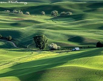 Photographie de paysage avec grange, terres agricoles vert Photo, Art mural, impression, Home Decor, Fine Art, Art Bureau, Rolling Hills Art, Palouse Photo